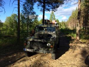 Finnische Wälder